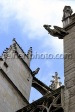 favorite Photograph Gargoyles Lyon France © Paul Reinert link to Alamy.com